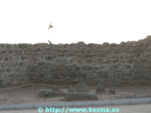 Tombs of the Imams of Janat-ol-Baqi, in Medina, al-Hijaz, Saudi Arabia.